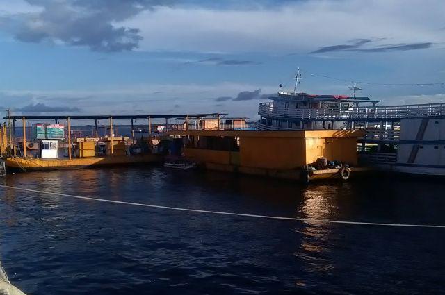 balsa amarela